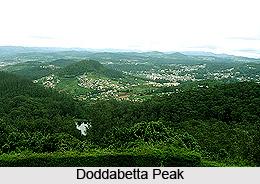 9. _Doddabetta_Peak