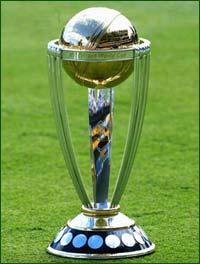cricket8