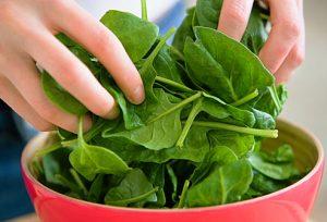 getty_rf_photo_of_omega_3_rich_leafy_green_spinach