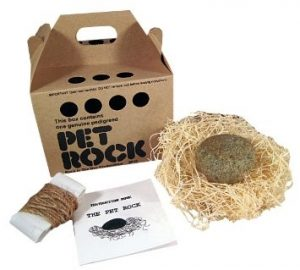 Pet Rock-Business,strange business idea