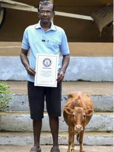 world records 2