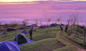 Camp Roxx