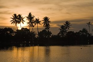 Kerala backwaters1