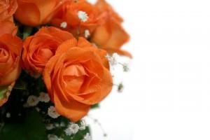 wedding anniversary4